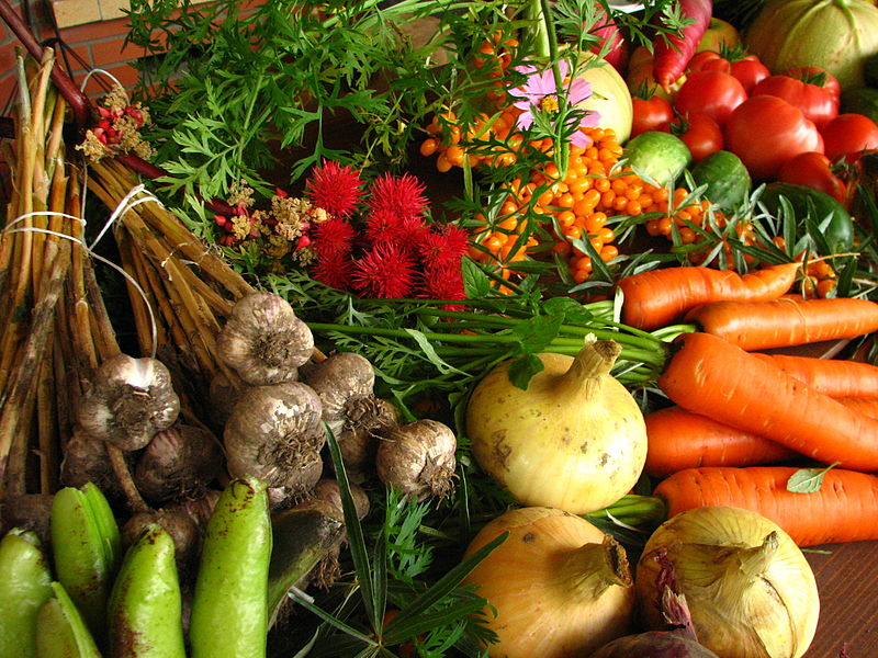 800px-Ecologically_grown_vegetables